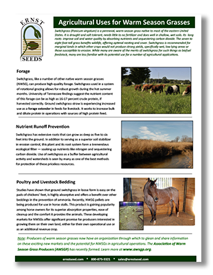 Agricultural-Uses-for-Warm-Season-Grasses