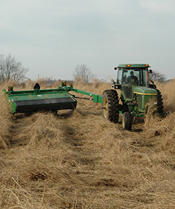 Bale-Harvester-for-Switchgrass