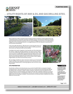 Pipelines-and-Utilities-Printable-Planting-Guide