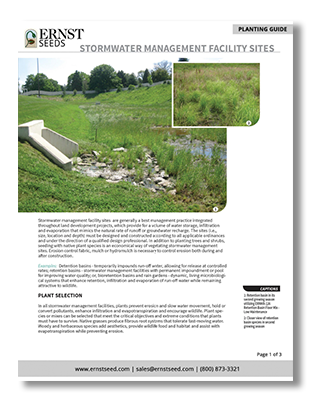 Stormwater-Management-Printable-Planting-Guide