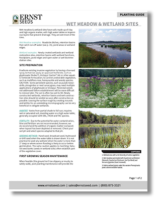 Wet-Meadows-and-Wetlands-Printable-Planting-Guide