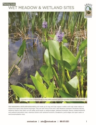 Wet Meadow and Wetland Sites Planting Guide_web